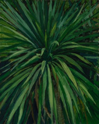 Yucca, 14.7.01 81 x 65 cm Öl/Lwd. 2001