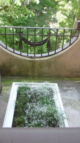 Balkon mit Beet mit weißen Blumen