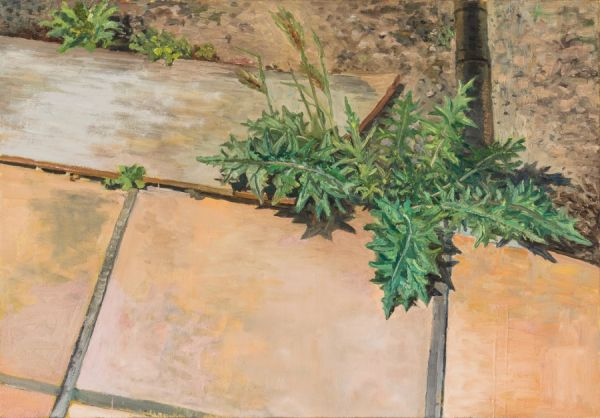 Distel  Öl/Lwd.  81 x 116 cm  2012      Foto: Marc Doradzillo