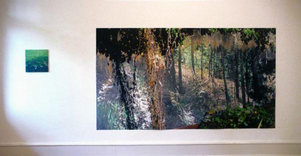 Es vergeht die Zeit im Garten 2007 160 x 285 cm digital-print auf Folie