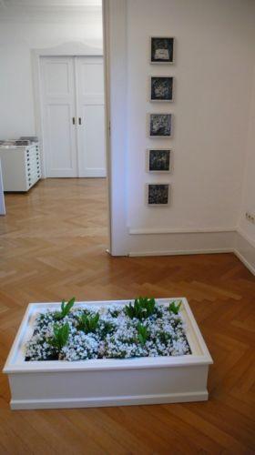 Beet mit weißen Blumen Papier löst sich auf, 1997, 5teilig, je 18x18 cm, Handabzug auf Barytpapier.